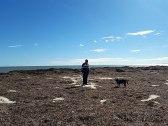 Cliff Heads 'weedy' beach