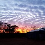 Beautiful sunrise in the wheatbelt