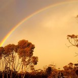 Rainbow at Hyden