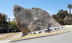 Albany - Dog Rock