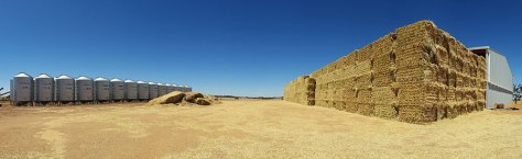 pano-heaps-of-hay