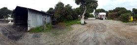 Alexander Bay-old hut site