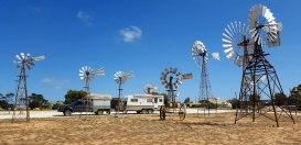 Penong-Windmill-museum
