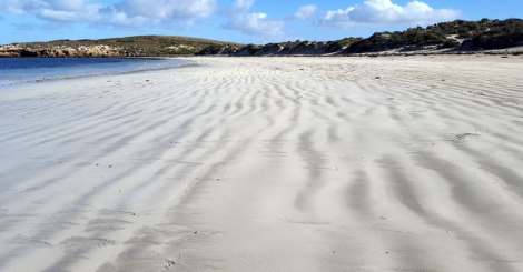 Sandy Cove ripples in the sand