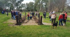 The planting & blessing of vines @ Bungaree