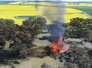 Paddock bonfire
