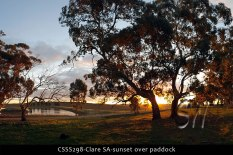 CSSS298-Clare-SA-sunset-over-paddock