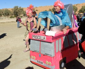 Priscilla - brilliant!!
