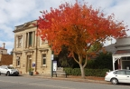 Angaston-a stand out colour