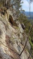 Bago Bluff NP cliffs