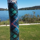 All power poles painted in Scottish tartan