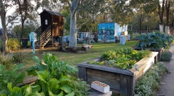 The Lost Plot Community Garden, Port Macquarie