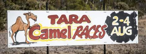 Roadside Race sign