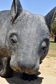 Thallon - Statue endangered Northern Hairy Nosed Wombat