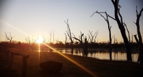 Lara Wetlands-sunrise