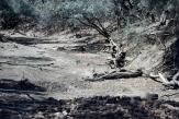 Crossing the barren Barcoo River