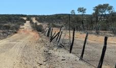 John Egan Pioneer Track-over 100yr old dingo fence